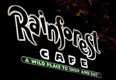 Segno di neono del caffè della foresta pluviale Fotografie Stock