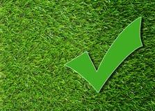 Segno di spunta verde Fotografie Stock Libere da Diritti