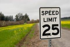 Segno di velocità Fotografia Stock Libera da Diritti