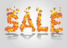 Segno di vendita di vettore dalle foglie di autunno Immagine Stock