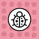 Segno e simbolo dell'icona della coccinella su fondo rosa Fotografie Stock