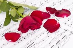 Segno musicale e Rosa fotografia stock