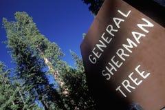 Segno per generale Sherman Tree, parco nazionale della sequoia, California Immagini Stock