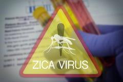 Segno quadrato d'avvertimento del virus di Zika Fotografie Stock Libere da Diritti
