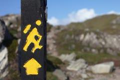Segno trekking giallo su un palo di legno Immagine Stock Libera da Diritti
