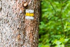 Segno turistico giallo sull'albero Immagini Stock