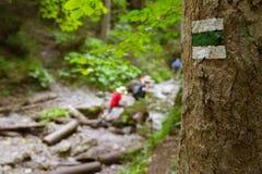 Segno turistico sull'albero Immagine Stock Libera da Diritti