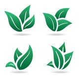 Segno verde, foglie di eco Immagine Stock Libera da Diritti