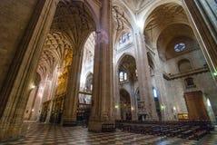 Segovia domkyrka royaltyfri bild