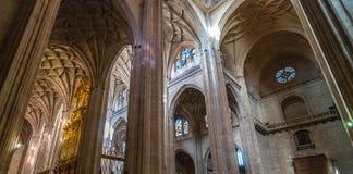 Segovia domkyrka Royaltyfria Foton
