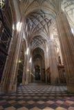 Segovia domkyrka royaltyfri foto