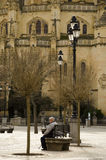 Segovia, resting Royalty Free Stock Image