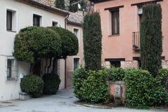 SEGOVIA SPANIEN - FEBRUARI 11, 2017: Gamla hus, dekorativa klippte träd och en springbrunn på Segovia Arkivbild