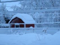 Segrad vinter Arkivbilder