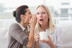 Segredo de revelação da mulher a seu amigo surpreendido Imagens de Stock Royalty Free