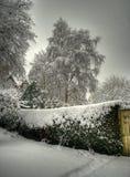 segreto del giardino fotografia stock libera da diritti