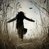 Segua il corvo Immagini Stock