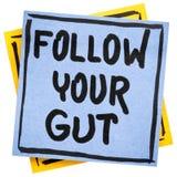 Segua il vostro consiglio o ricordo dell'intestino Immagine Stock