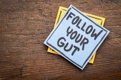 Segua il vostro consiglio o ricordo dell'intestino Fotografie Stock