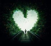 Segua il vostro cuore fotografia stock