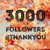 3000 seguaci Fotografia Stock