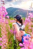 Seguami nelle montagne che viaggiano insieme immagine stock libera da diritti