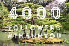 seguidores 4k Fotografia de Stock