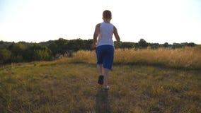 Seguimento ao menino novo que corre na grama verde no campo no dia ensolarado Criança que movimenta-se no gramado exterior Homem  video estoque