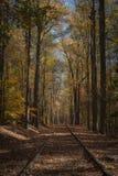Seguimiento al otoño Imágenes de archivo libres de regalías