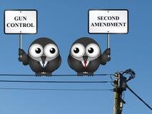 Segunda enmienda foto de archivo libre de regalías