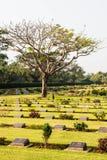 Segunda guerra mundial do cemitério imagem de stock royalty free