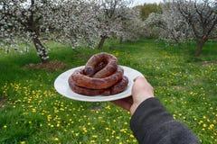 Seguo il parco per la salsiccia fritta Fotografia Stock Libera da Diritti