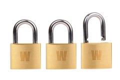 Segurança do Web Fotos de Stock