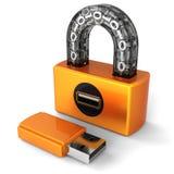 Segurança dos dados. Fechamento do Usb de Digitas (alugueres) Imagem de Stock Royalty Free