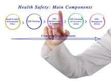 Seguridad de la salud: Componentes principales Fotos de archivo libres de regalías