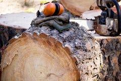 Seguridad del maderero Foto de archivo libre de regalías