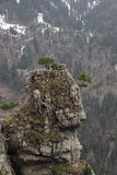 Sehen Sie auf dem Weg zum Gipfel von Tegelberg-Berg an Lizenzfreies Stockfoto