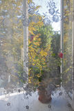 Sehen Sie das offene Fenster durch den transparenten Vorhang an Stockbilder