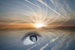 Sehen Sie die Sonne