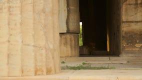 Sehen Sie innere Überreste des alten Tempels, die alten Marmorsäulen an und Steinwände verfallen stock video