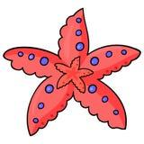 Sehen Sie Starfish -01 Lizenzfreie Stockfotos