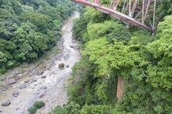 Sehen Sie unten zum Flussbett Rio Grandes - unter die alte Eisenbahnbrücke an Stockbilder