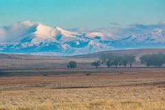 Sehnt sich Spitze in Colorado, das von den Ebenen gesehen wird stockfotos