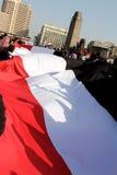 Sehr große ägyptische Markierungsfahne - 25. Januar 2012 Stockbild