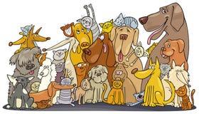 Sehr große Gruppe Katzen und Hunde Stockfotos