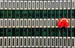 Sehr großer roter Marienkäfer auf einer Gebäudefassade Lizenzfreie Stockfotografie
