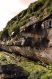 Sehr hohe Klippen in Schottland lizenzfreies stockfoto