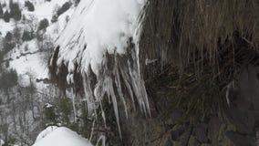Sehr nah herauf Ansicht von Eiszapfen des Eises mit fallenden Tropfen stock footage
