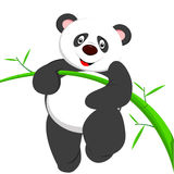 Sehr netter Panda kletterndes bamboe Lizenzfreies Stockfoto