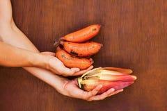 Sehr neues rotes Bananenbündel in den Händen Lizenzfreie Stockbilder